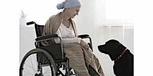 old invalid woman in wheelchair